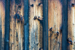 Blue and brown wooden texture. Empty blue and brown striped wooden texture for background stock photography