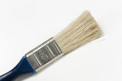 Blue Brush Royalty Free Stock Images