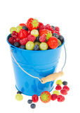 Blue bucket fresh fruit Stock Photos