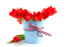 Blue bucket with red tulips Stock Photos
