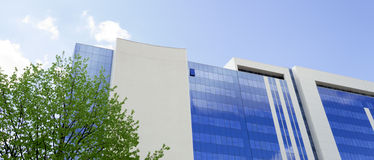 Blue building with an open window. A modern building with blue windows reflecting the sky. A single window is open. In front of the building stands a tree. The royalty free stock images