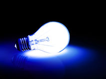 Blue bulb Stock Photography