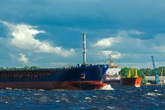 Blue bulk carrier. Moving in clear summer day stock images