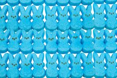 Blue bunny easter candy. Over a white background Royalty Free Stock Image