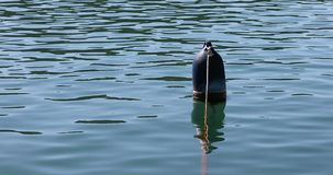 Old blue buoy stock footage