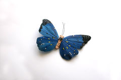 Blue Buterfly. Blue Butterfly on a white background Stock Images