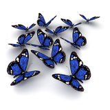 Blue butterflies Royalty Free Stock Images