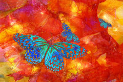 Blue Butterflies. This is a joyful abstract image of fanciful blue butterflies flying across a textured red and yellow background vector illustration