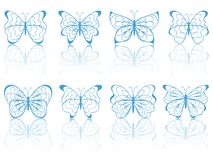 Blue butterflies. Stock Image