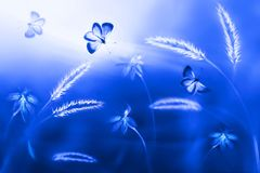 Blue butterflies  against a background of wild navy blue flowers and grass. Artistic natural image. Selective soft focus Stock Photos