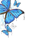 Blue butterflies background. Blue butterflies painting on white background Stock Photo