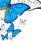 Blue butterflies background. Blue butterflies painting on white background Stock Image