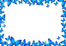 Blue butterflies border Stock Images