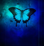 Blue butterflies on darkbackground Royalty Free Stock Images