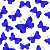 Blue butterflies over white background. Seamles vector pattern. Blue butterflies over white background. Seamles vector pattern royalty free illustration
