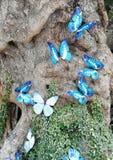 Blue butterflies in tree. Blue butterflies in nature bulk background  life Stock Photo