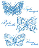 Blue Butterflies Watercolor Contour Drawing Imitation Stock Photography