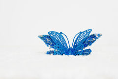 Blue butterflies is a white background. Stock Photo