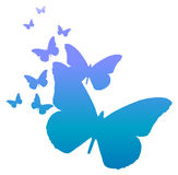 Blue butterfly. Drawing of butterfly in a white background Stock Image