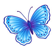Blue butterfly. Vector blue butterfly (Polyommatus icarus) with open wings Stock Image