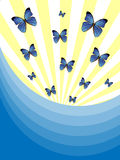 Blue Butterfly Background Royalty Free Stock Photography