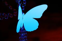 Blue butterfly on decoration Royalty Free Stock Images