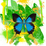 Blue butterfly on  watercolor background Royalty Free Stock Photo