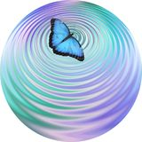 Blue Butterfly making ripples on water coaster drinks mat clock face Royalty Free Stock Photos