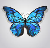 Blue butterfly morpho Royalty Free Stock Image