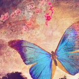 Blue butterfly old postcard background Royalty Free Stock Images