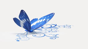 Blue butterfly on ornate background stock video
