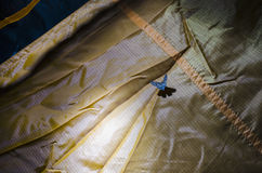 Blue butterfly in a tent Royalty Free Stock Images
