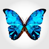 Blue butterfly on the white blackground Stock Photos