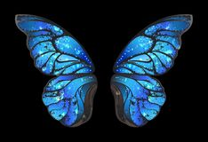 Blue butterfly wings on black background Vector Illustration