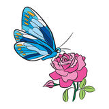 Blue butterfly with yellow dot wings, pink rose flower and green leaf. Freehand black Stock Photos