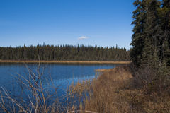 Blue Calm Lake. With blue sky and forest shoreline in British Columbia, Canada along Alaska Highway Stock Image