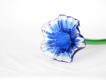 Blue glass calyx flower Royalty Free Stock Photo