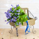 Blue campanula bouquet on wooden bench. Beautiful blue campanula bouquet with blue ribbon on wooden bench, on wood background Royalty Free Stock Image