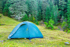 Blue camping tent in a green forest Stock Image