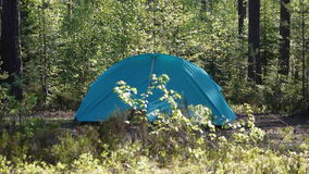 Blue  camping tent in the wood on a glade stock video footage