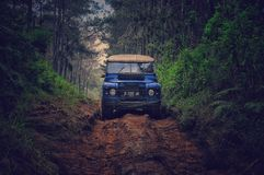 Blue Car on Dirt Road Between Green Leaf Trees Royalty Free Stock Photography