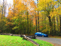 Blue car beside road in Autumn. Blue saloon car parked on a road beside trees in Autumn colors Royalty Free Stock Image