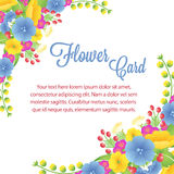 Blue Card Flower Royalty Free Stock Image
