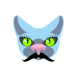 Blue Cat with big mustache. Pet hipsters. Vector icon, logo Royalty Free Stock Image
