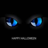 Blue Cat Eyes Stock Photos