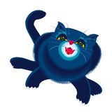 Blue cat female Stock Photos