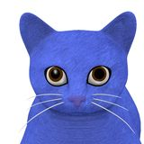 Blue cat head Stock Photo