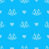 Blue cat Royalty Free Stock Images