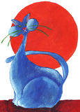 Blue cat with the sun red Royalty Free Stock Photo