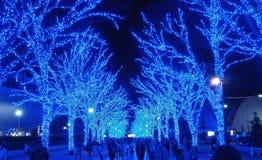 Blue cave illumination, yoyogi park, Tokyo stock images